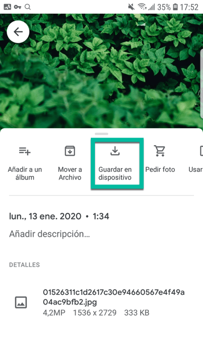 Google Fotos guardar en dispositivo