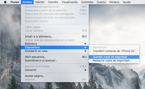 Guardar copia de seguridad iTunes
