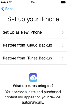 Instalar iPhone
