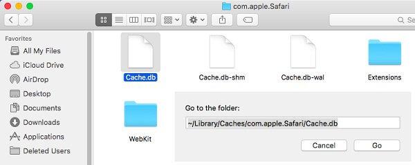 borrar el archivo para acelerar Safari