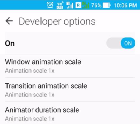 Opición de desarrollador