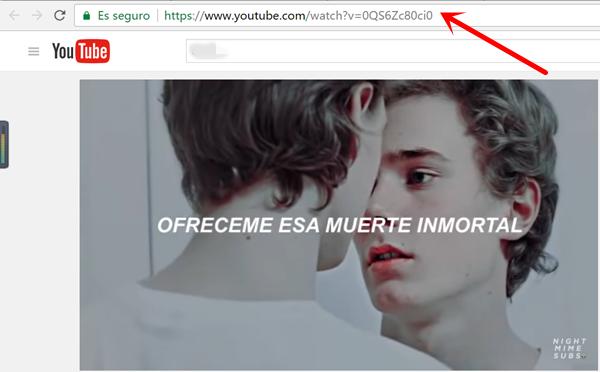 Copiar URL de Vídeos de YouTube